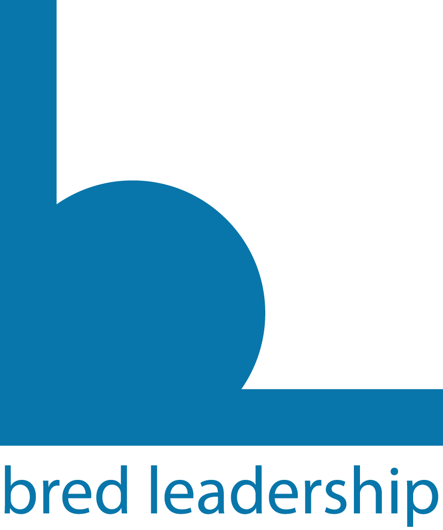 LOGO Design for Consulting Company BRED LEADERSHIP
